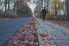 Endless autumn road.. (erlingraahede) Tags: brown color melancholic vsco road leaf poetic endless canon november autumn denmark holstebro