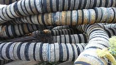 Incorporated Fabric (Brian Cairns) Tags: brianbcairns dunbar ncn76sustrans johnmuirway