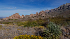 (el zopilote) Tags: panorama newmexico landscape lumix pano organmountains g9 organmountainsdesertpeaksnationalmonument leicavarioelmarit1260mmf284asph chihuahuandesert