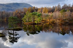 Tarn Hows (Nige H (Thanks for 25m views)) Tags: nature landscape lake tarn tarnhows lakedistrict cumbria england autumn fall trees reflection