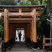 A visitor walks up steps at Fushimi Inari Shrine (伏見稲荷大社) in Kyoto, Japan