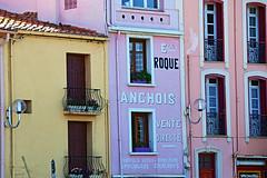 Collioure - Le Faubourg 5231 (franck.barré) Tags: collioure