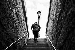 Pont Neuf, île de la Cité, Paris, France (o.mabelly) Tags: format plein ff frame full 7rm2 ilce a7 sony a7rii ilce7rm2 france alpha europe sonnar t fe 55mm f18 za bw black white noir blanc nb people streetphotography escalier runner coureur paris staircase pont neuf île cité