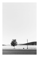 An Autumn Morning (bprice0715) Tags: canon canoneos5dmarkiii canon5dmarkiii landscape landscapephotography nature naturephotography beautiful beauty beautyinnature blackandwhite blackwhite bw monochrome mono highcontrast highkey lakegeorge adirondacks adirondackmountains adirondackpark fineart autumn fall fog mist mountains
