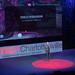 110819_TEDxCharlottesville_EJ_0200