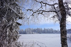 winter, Slovakia (majka44) Tags: tree slovakia snow winter view nature walk landscape travel atmosphere white forest building day sky blue light mood christmas card hightatras frozen lake people europe