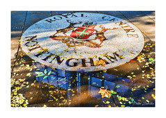 Autumn at the Royal Centre (PeteZab) Tags: royalcentre nottingham autumn leaves puddle reflection trch fall urban peterzabulis