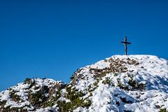Saldeiner mit Gämse (stefangruber82) Tags: chamois alps alpen tirol tyrol gämse snow schnee berge gipfelkreuz summitcross