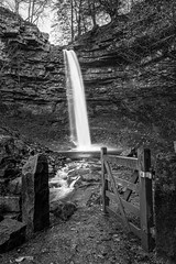 Hardraw Force (roseysnapper) Tags: nikkor2470f28 nikond810 northyorkshire blackandwhite wensleydale landscape monochrome outdoor river rocks trees waterfall hardrawforce