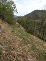 xeric ROW at Ardenheim (Pete&NoeWoods) Tags: skipper huntingdoncountypennsylvania ardenheimrow f19woo09 habitat xericrow