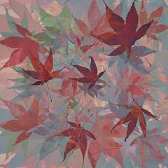 314/365 (Jane Simmonds) Tags: leaves acer maple garden iphone multipleexposure autumn 3652019