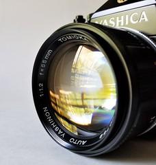 Auto Yashinon 55mm f1.2 by Tomioka Optical - 1973 (http://www.yashicasailorboy.com) Tags: macro macromondays yashica lens tomioka camera japan 35mm slr reflection tlelectrox