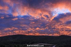 Ruta: El Cogulló de Cabra (881 m.) (Els 100 cims) (Las Fotos de Rafa Yanes) Tags: generation generator landscape light nature renewable sky sustainability technology watts windmill alternative atmosphere background blue calm cloud clouds cloudscape cloudy cloudysky colors crimson dramatic dramaticsky dusk efficiency electricity environment environmental flames fog forest generate global globalwarming horizon horizontal industrial industry innovation majestic morning mountain mountains offshore picturesque power reddish resource rotate scenic silhouette skyline spectacle spectacular splendid summit sun sundown sunlight sunrise sunset sunsetsky sunshine sustainable turbine twilight vacation wallpaper warming weather wind