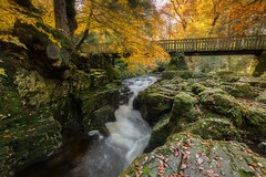 Tollymore Forest (peter_beagan) Tags: county bridge autumn trees ireland irish forest canon river waterfall long exposure colours stones down stepping northern 5diii ollymore ngc