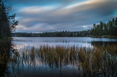 Winter scene (mabuli90) Tags: finland winter nature landscape water longexposure clouds snow grass tree forest reflection