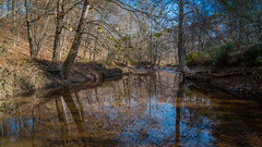 North Branch of Rock Creek (John Brighenti) Tags: flickr creek water reflection tranquil calm trees outside outdoors nature landscapephotography landscape autumn fall october meadowsidenaturecenter montgomerycounty moco maryland rockville hiking trail stream longexposure sony alpha a7rii ilce7rm2 sel24f14gm wideangle gm gmaster 24mm bealpha sonyshooter