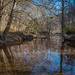 North Branch of Rock Creek