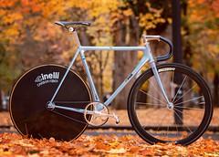 Cinelli Laser Nostra (IG: @ADANGERPDX) Tags: cinelli laser pista nostra grammo seatpost stem carbon fiber disc disk portland oregon bike collection track fixed gear