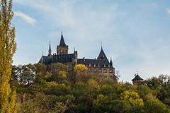 Wernigerode (Frenkieb) Tags: schloss wernigerode castle harz sachsenanhalt deutschland germany