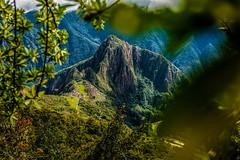 Machu Picchu 2 Dias (Mit Viajes Cusco) Tags: machupicchu tour trilha trek trilhas cusco city caminho machu picchu inca incas trekking incaico