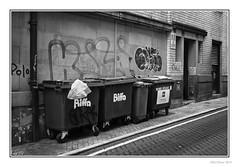 Biffa (Seven_Wishes) Tags: sheffield southyorkshire 2019 jo outdoor photoborder canoneos5dmarkiv canonef24105mmf4lisii biffa wheeliebins redbins urban street road building graffiti doorway door drainpipe windows polomint bw mono monochrome blackandwhite lowkey newcastleupontyne tyneandwear uk