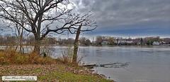 Vue vers Laval des Rapides de l'ile Perry, 10 nov. 2019 (Jean-Marc Hurtubise) Tags: ile perry montreal novembre 2019 train paysage pont riviere eau ruines