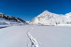 snow@bernina: my trace (2/3) (jaeschol) Tags: berninapass europa europe graubuenden grischuna kantongraubünden kontinent schweiz suisse switzerland