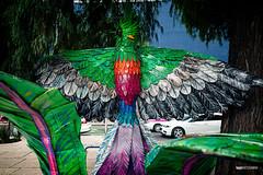 Pájaro Alebrije (hapePHOTOGRAPHIX) Tags: 484mex alebrije américadelnorte artesaníasyartefolklórico ciudaddeméxico distritofederal dunkel event kunsthandwerk laciudaddeméxico mexicanhandcraftsandfolkart mexico mexicocity mexiko mexikostadt méxico nordamerika northamerica object ricohgriii tagdertoten tradition artesanía dayofthedeads diadelosmuertos dsplyys handicraft hapephotographix artesaníasyartefolklóricomexicano