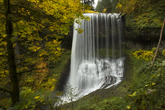 Middle North Falls, Silver Falls State Park, Oregon (Bonnie Moreland (free images)) Tags: silverfallsstatepark oregon middlenorthfalls waterfall water cliff trees autumn falls leaves change