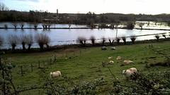 Photo of Flooded fields Crawley Oxfordshire UK.