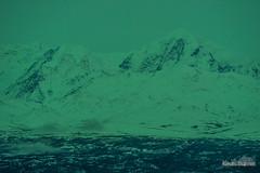 Moffit By Aurora Light (kevin-palmer) Tags: alaska october fall autumn alaskarange aurora auroraborealis northernlights bright green night sky colorful cold nikond750 nikon180mmf28 mountains richardsonhighway snow mountmoffit
