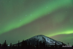 Headlights on Donnelly (kevin-palmer) Tags: alaska october fall autumn alaskarange aurora auroraborealis northernlights bright green night sky colorful stars starry clear cold nikond750 tamron2470mmf28 mountains donnellydome richardsonhighway snow trees borealforest bigdipper ursamajor