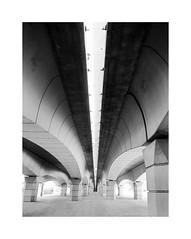Valencia 35 (BLANCA GOMEZ) Tags: spain valencia bw blackwhite light shadows textures patterns pov puntodefuga arquitectura architecture arquitectos puente bridge puentedelasgárgolas puentedelreino puentedefrancia ingeniero salvadormonleóncremades engineer silhouettes bridgeofoldkingdom pontdelregne