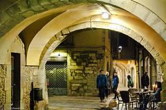 Girona Night (rossendgricasas) Tags: girona night street streetphotography nocturna catalonia cat people nikon tamron