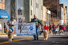 2019 Veterans Parade in Richmond, Indiana (WayNet.org) Tags: waynet wayne county main street indiana veterans national road golden retriever dog veteran club parade waynetorg training richmond goldenretriever mainstreet nationalroad waynecounty dogtraining unitedstatesofamerica