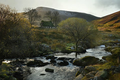 In the shadow of Snowdon (PentlandPirate of the North) Tags: bobblehatcottage snowdonia northwales ivy gwynedd ruin derelict