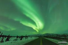 Richardson Highway at Night (kevin-palmer) Tags: alaska october fall autumn alaskarange aurora auroraborealis northernlights bright green night sky colorful stars starry clear cold nikond750 sigma14mmf18 mountains richardsonhighway road snow