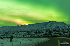 Midnight Moose (kevin-palmer) Tags: alaska october fall autumn alaskarange aurora auroraborealis northernlights bright green night sky colorful stars starry clear cold nikond750 nikon50mmf14afd mountains richardsonhighway road snow
