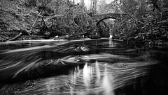 Hermitage in Mono! (captures.in.time) Tags: landscape landscapephotography photography land scape water waterfall torrent flow river rivers rocks rock blue green tree forrest forest canon canonphotography polariser 09nd lseries 1740 countryside nationalpark wildlife patterns longexposure le perthshire perth autumn fall hermitage braan blackandwhite ngc mono bnw bw