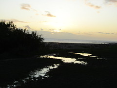 Flooded greensward (wallygrom) Tags: england westsussex eastpreston kingston kingstongorse sunset beach seafront seaside