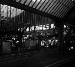 Train station (mkk707) Tags: film analog 35mmfilm 24x24 germancameras zeissikontenaxii rangefinder carlzeissjenatessar204cm zeissikonstyle vintagelens vintagefilmcamera darmstadt hauptbahnhof agfaapx100 wwwmeinfilmlabde