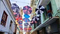 Bajo los paraguas de colores