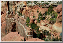 Sandstone Wall in Zion's Canyon Overlook (our cultural archive) Tags: zionnationalpark utahnationalparks springdale utah geologyinutah geodiversity naturalheritage nationallysignificantlandscape culturalheritage sandstone geologicalerosion geologicheritage