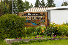 Fawcett Sign (Bracus Triticum) Tags: fawcett sign アルバータ州 alberta canada カナダ 8月 八月 葉月 hachigatsu hazuki leafmonth 2019 reiwa summer august