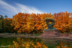 autumn in Warsaw (MWojciechowski Foto) Tags: warsaw warszawa chopin autumn autumnleaves autumnvibes colours colors colourful colorful reflection reflections leaves sky skyline bluesky day daylight water trees view scene scenery park city cityscape