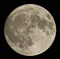 Photo of Nearly Full Moon