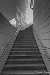 FLV 02 - Structure 02 (François-Joseph76) Tags: acier nikon novembre staircase louisvuittonfoundation nikond7100 noirblanc escalier november frankgehry paris îledefrance fondationlouisvuitton architecture concrete béton 2019 steel blackwhite france