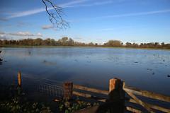 Photo of Flooded fields near Waterstock