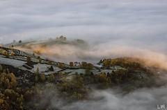 Douceur matinal (Manonlemagnion) Tags: paysage sauvage grandballon alsace nature brume matin lumière leverdusoleil sunrise automne gelé nikond7000 70200mm