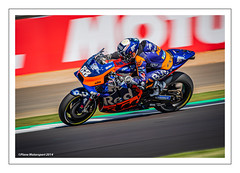 Photo of MIGUEL OLIVEIRA #88
